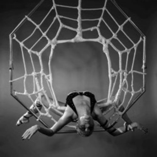Aerial Contortion Act