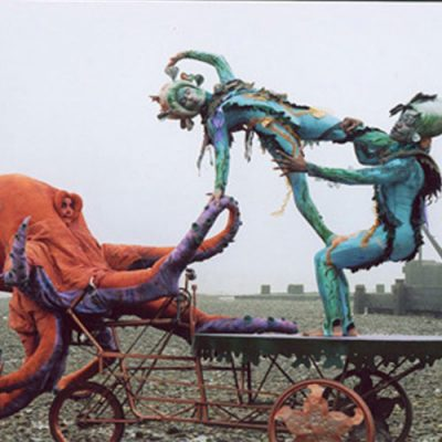 Supersize Octopus