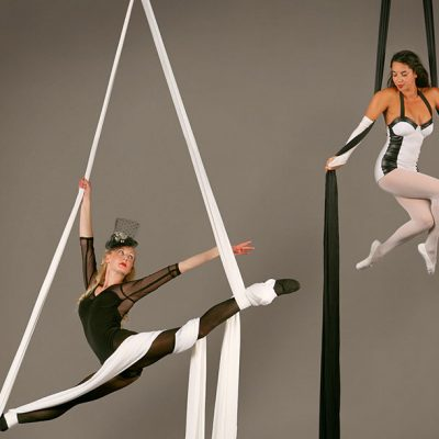 Monochrome Silks & Hoops