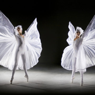 Winged Ballerinas