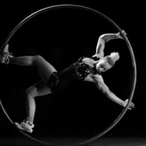 Triple Cyr Wheel