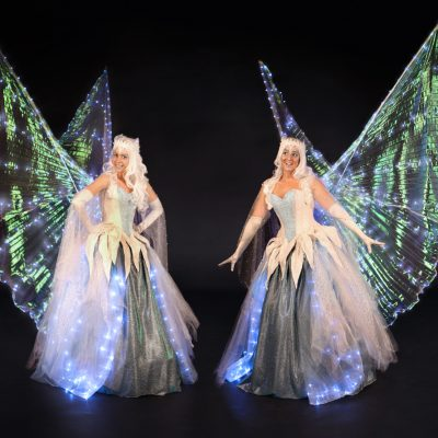 Glide-about Fairies